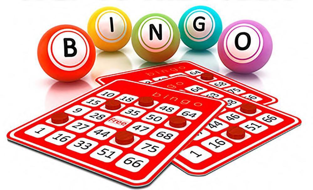 Bingo Definizione